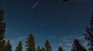 This Year, The Lyrids Meteor Shower Above Colorado Will Peak On Earth Day In A Celestial Celebration