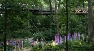 Experience The Georgia Forest From A New Perspective On The Canopy Walk At Atlanta Botanical Garden