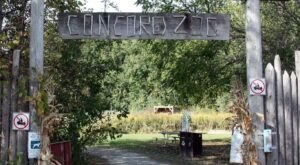 Admission-Free, Concord General Store And Zoo In Wisconsin Is The Perfect Day Trip Destination