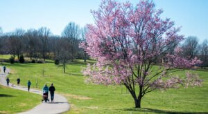 The Arboretum State Botanical Garden Is An Inexpensive Road Trip Destination In Kentucky That's Affordable