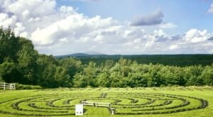 Sip Tea Overlooking Lavender Fields And Horse Pastures At The Farm to Table Tea Event In Massachusetts