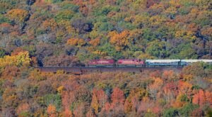 The A&M Railroad's Van Buren to Winslow Excursion Offers Some Of The Most Breathtaking Views In Arkansas