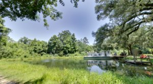 Escape To The Tranquility Of Berry Creek Cabins In Louisiana This Summer