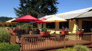 There's So Much To Discover In Woodinville, Washington's Most Underrated Wine Mecca