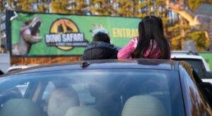 Dino Safari, A Drive-Thru Dinosaur Adventure, Is Coming To Wisconsin