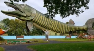 Step Inside The Mouth Of The World's Largest Fish For One Of Wisconsin's Most Unique Views