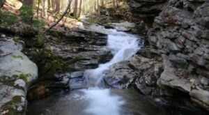 7 Incredible Natural Wonders In Pennsylvania That You Can Witness For Free