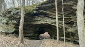 Wonder At One Of The Only Natural Bridges In Indiana At Portland Arch Nature Preserve
