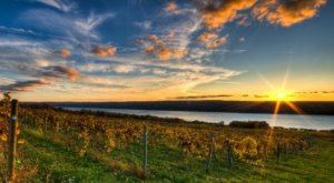 New York's Dreamy Atwater Vineyards Has A Prime Spot Along The Seneca Lake Wine Trail