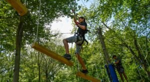 Soar Through The Trees At Boundless Adventures In New York For A Thrilling Good Time