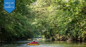 Enjoy Tubing And Tacos On This West-Central Ohio Day Trip