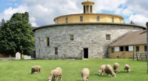 Meet Cuddly Baby Animals At Massachusetts' Hancock Shaker Village