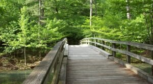 Take An Easy Loop Trail Past Some Of The Prettiest Scenery In Arkansas On Hunt's Loop Trail