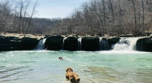 You'll Want To Spend The Entire Day At The Gorgeous Natural Pool In Arkansas' Kings River Falls Natural Area