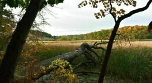 Explore New York's Old Rifle Range Trail For A Scenic Hike Through The Forest