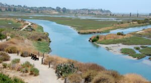 Hike Around A Tranquil Lagoon And Explore The Wetlands At This Nature Reserve In Southern California