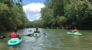 Plan A Float Trip Through Roanoke, Virginia, Named One Of The Best Towns For Paddling In The Country
