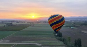 Enjoy Oregon's Scenic Beauty Like Never Before With Portland Rose Hot Air Balloons