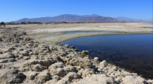 This Bizarre Desert Lake In Southern California Has An Entire Beach Made of Fish Bones