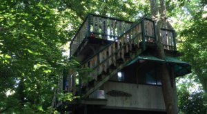 Sleep In A Treehouse Overlooking The Shenandoah River At The Country Place Campground In Virginia