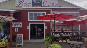 Packer Orchards In Hood River Serves Marionberry Cinnamon Rolls And We're Here For It