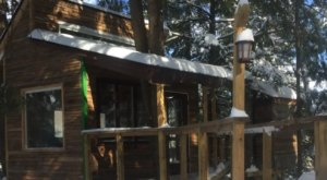 For Just $128 A Night, You Can Stay In A Treehouse At Green Mountain National Forest In Vermont