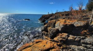 Marvel At Vivid Orange Lichen-Draped Rocks At Butterwort Cliffs SNA, A Minnesota Nature Area That Few People Know About