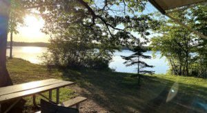 Twin Lakes State Park In Michigan Is Home To A Stunning 175-Acre Campground