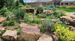 Colorado's Rock Garden And Grotto, The Gardens On Spring Creek Is A Work Of Art