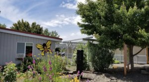 Elkton Community Education Center Of Oregon Is Home To The State's Largest Butterfly House And Maze