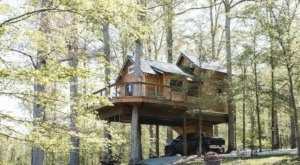 Sleep Among The Treetops At The Serenity House Treehouse In Tennessee