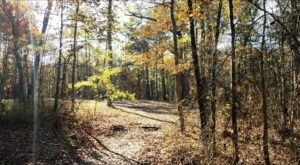 Chatham County Is Allegedly One Of North Carolina's Most Haunted Small Counties
