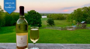 Adventure Awaits When You Embark On This Northern Ohio Winery And Waterfall Day Trip