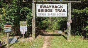 Walk Across A 290-Foot Bridge On Swayback Bridge Trail In Alabama