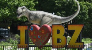 Everyone Will Have A Blast Searching For Dinos Everywhere At The Brookfield Zoo In Illinois