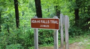 The Adi-Hi Falls Trail In Georgia Is A Quick Jaunt Through Nature With A Waterfall Ending