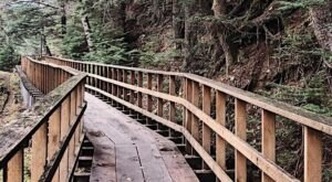 Travel Over Boardwalk Bridges When You Hike Up Into The Mountains On The Cope Park Trail In Alaska