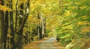 Take a Scenic Drive On Lincoln Gap Road And Be Wowed By Vermont's Beauty