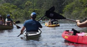 A Trip Down The Alabama Scenic River Trail Will Bring Out The Adventurer In You