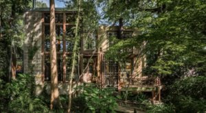 This Whimsical Treehouse Is The Most Bookmarked Airbnb In Texas And It's So Easy To See Why