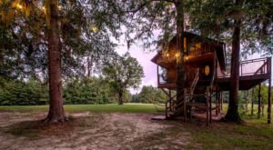 Book An Overnight Stay At This Secluded Treehouse Airbnb In Alabama