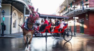 Take A Carriage Ride Through The French Quarter For A Truly Unique Louisiana Experience