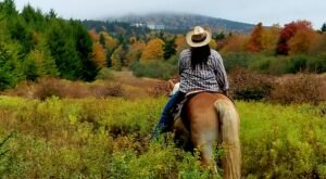 Take An Epic Tour Of Snowshoe Mountain On Horseback With Autumn Breeze Stables In West Virginia