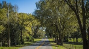 Hop In Your Car And Take Big Bend Scenic Byway For An Incredible 220-Mile Scenic Drive In Florida