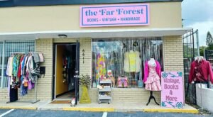 The Far Forest In Florida Is A Vintage Shop & Bookstore Brimming With Treasures