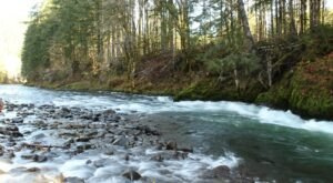 The 5-Mile Wilson River Trail In Oregon Is Full Of Jaw-Dropping Natural Pools