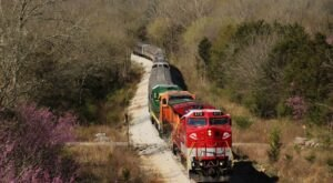 The Tennessee Central Railway Museum Has A Wine-Themed Train In Tennessee That Will Give You The Ride Of A Lifetime
