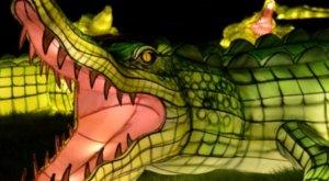 Get Lost In A Dreamy Wonderland At Asian Lantern Spectacular In Rhode Island