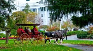 Take A Carriage Ride Through A Mountain Resort For A Truly Unique West Virginia Experience