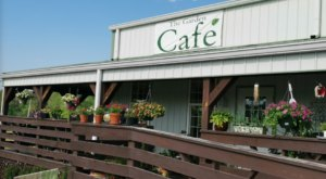 The Garden Cafe In North Carolina Is A Secret Garden Restaurant Surrounded By Natural Beauty